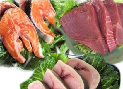Carne y productos de pescado