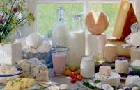 La composición química de la leche y los productos lácteos