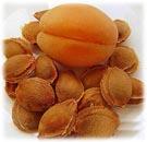 حبات البذور التسمم من الفواكه