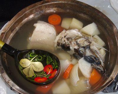 السمك مع الأذن الأبيض الجدول النبيذ