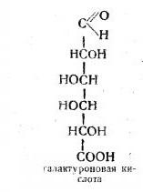 sustancias composición de pectina. Molecular estructura PECTIN