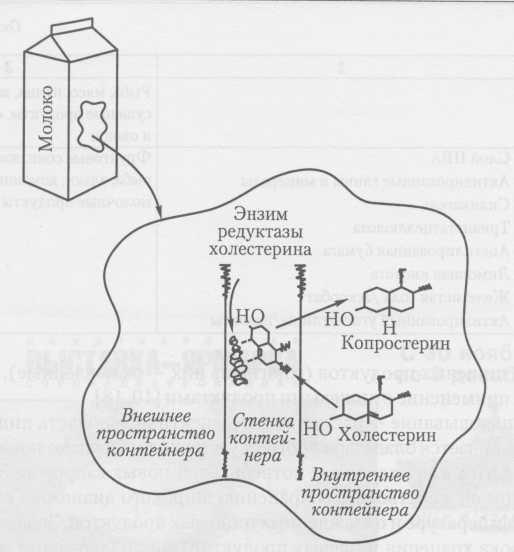 Удаление холестерина в упаковке с помощью иммобилизованных ферментов