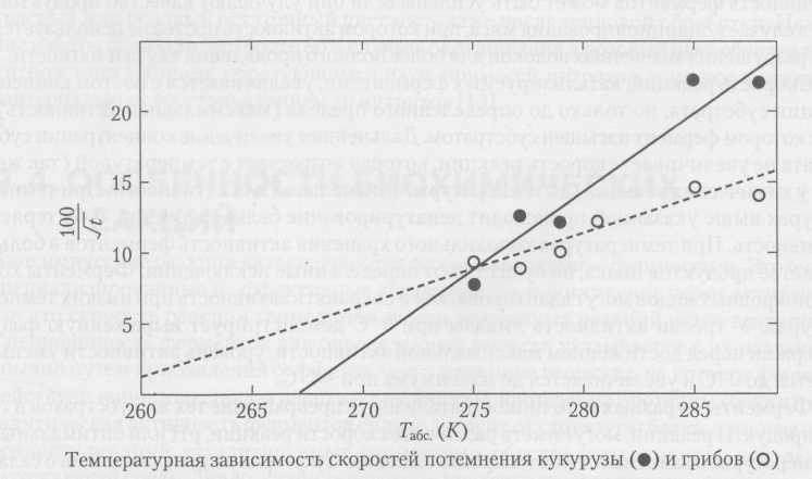 Органолептические изменения в салате из макаронных изделий