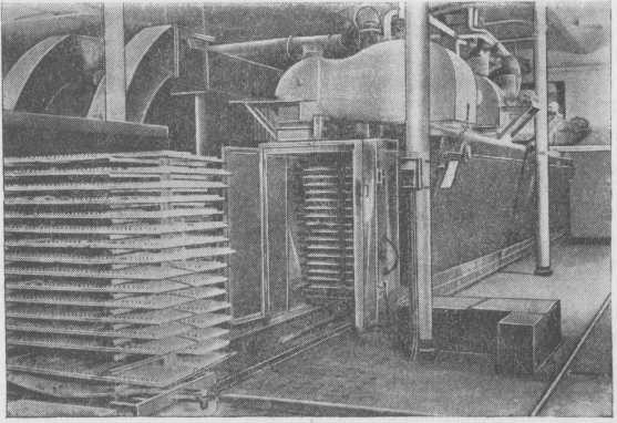 General view of the continuously operated dryer pastes.