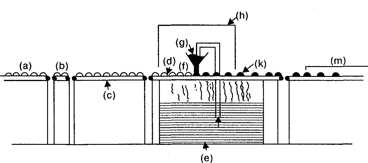 Instalación para el glaseado